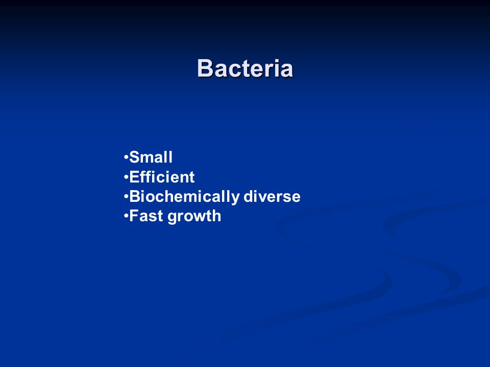 Bacteria Small Efficient Biochemically diverse Fast growth
