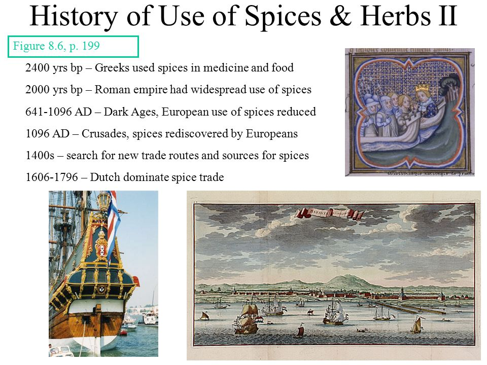 History of Use of Spices & Herbs II 2400 yrs bp – Greeks used spices in medicine and food 2000 yrs bp – Roman empire had widespread use of spices 641-1096 AD – Dark Ages, European use of spices reduced 1096 AD – Crusades, spices rediscovered by Europeans 1400s – search for new trade routes and sources for spices 1606-1796 – Dutch dominate spice trade Figure 8.6, p.