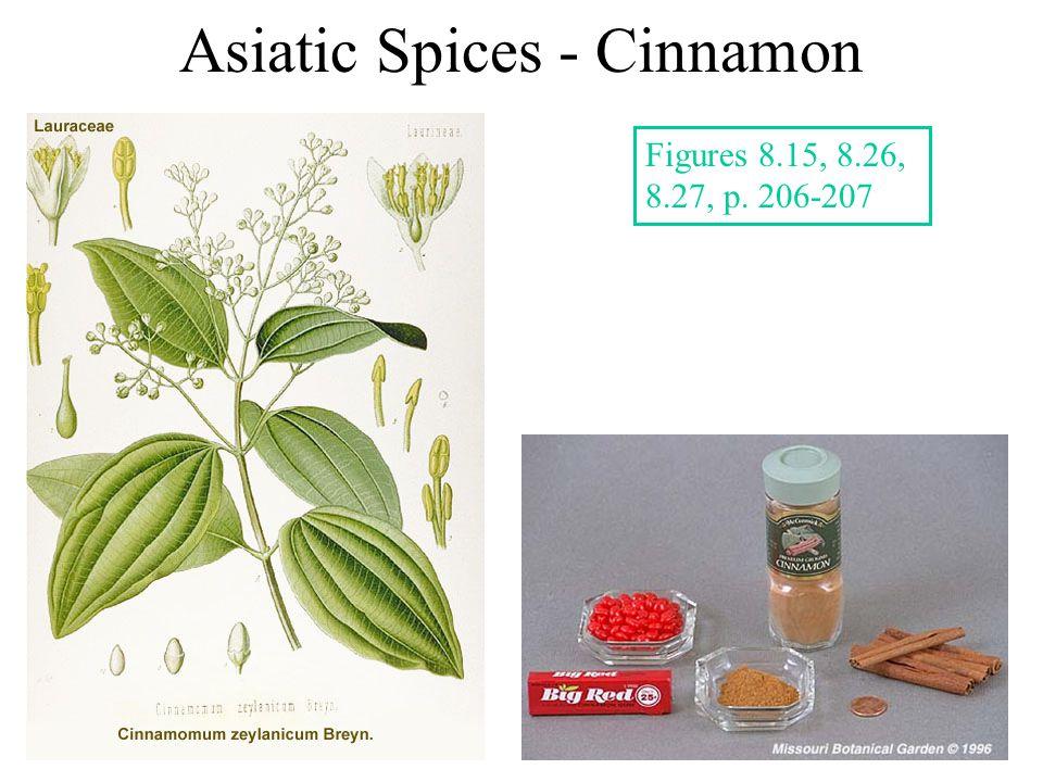 Asiatic Spices - Cinnamon Figures 8.15, 8.26, 8.27, p. 206-207