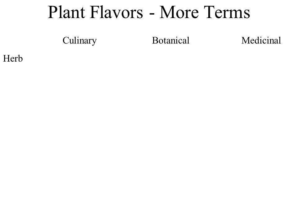 Plant Flavors - More Terms CulinaryBotanicalMedicinal Herb