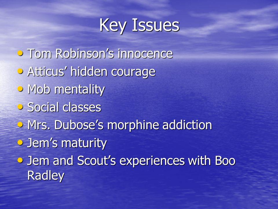 Key Issues Tom Robinson's innocence Tom Robinson's innocence Atticus' hidden courage Atticus' hidden courage Mob mentality Mob mentality Social classes Social classes Mrs.
