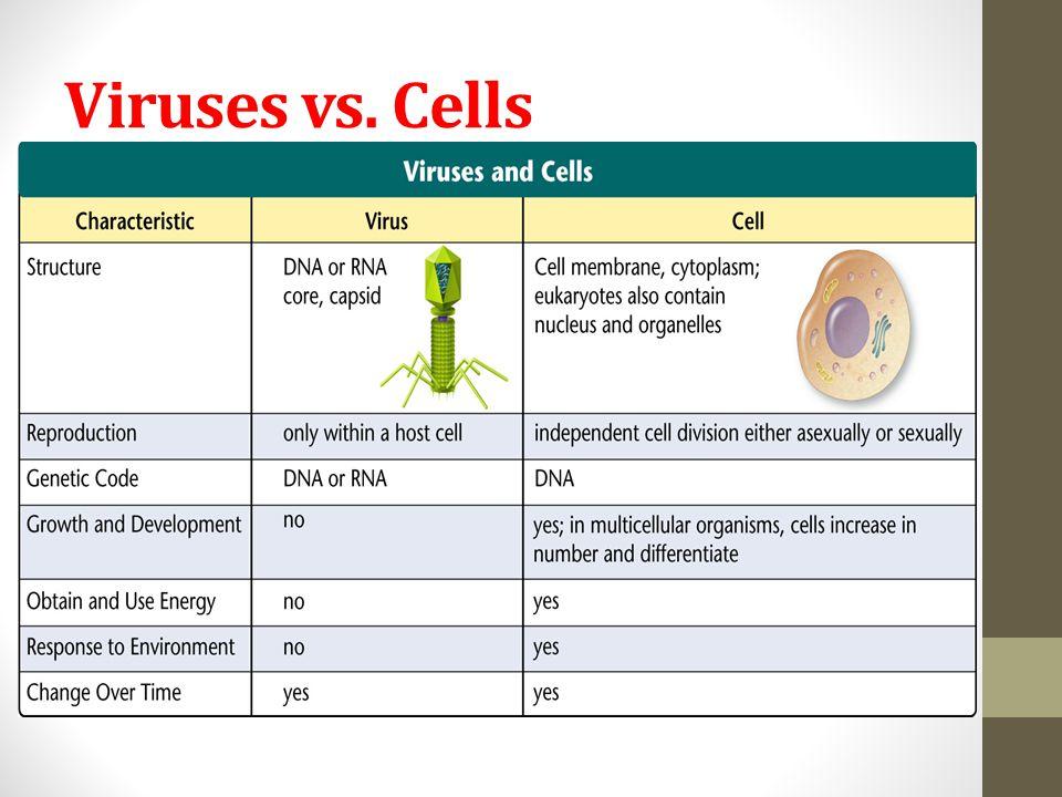 Viruses vs. Cells