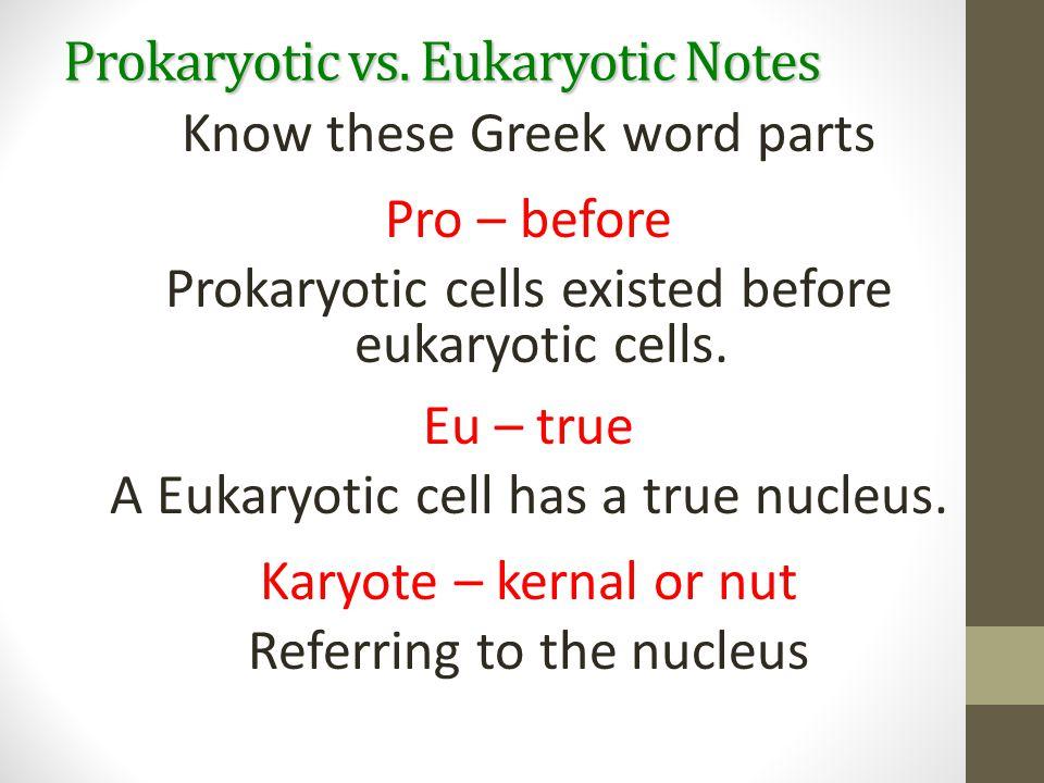 Prokaryotic vs. Eukaryotic Notes Know these Greek word parts Pro – before Prokaryotic cells existed before eukaryotic cells. Eu – true A Eukaryotic ce