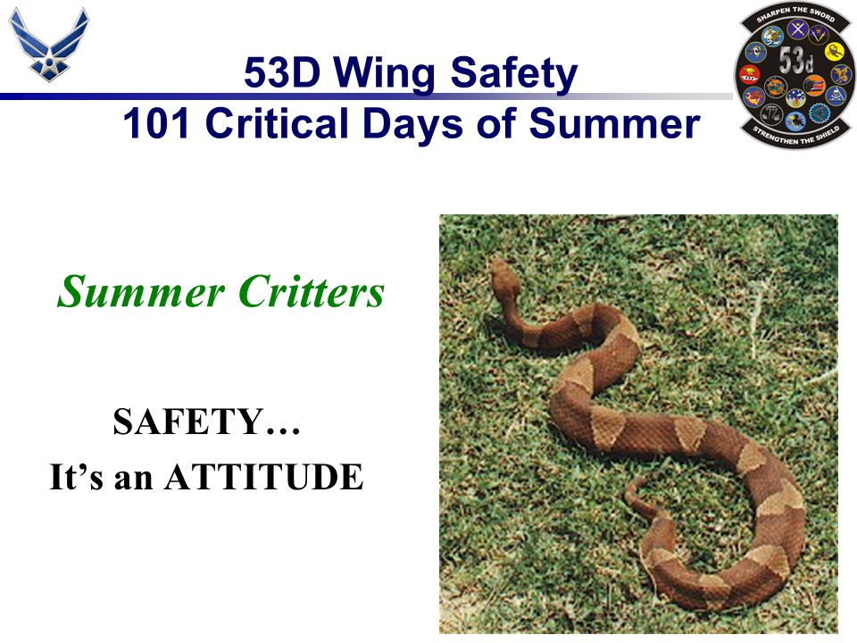 53D Wing Safety 101 Critical Days of Summer Summer Critters SAFETY… It's an ATTITUDE