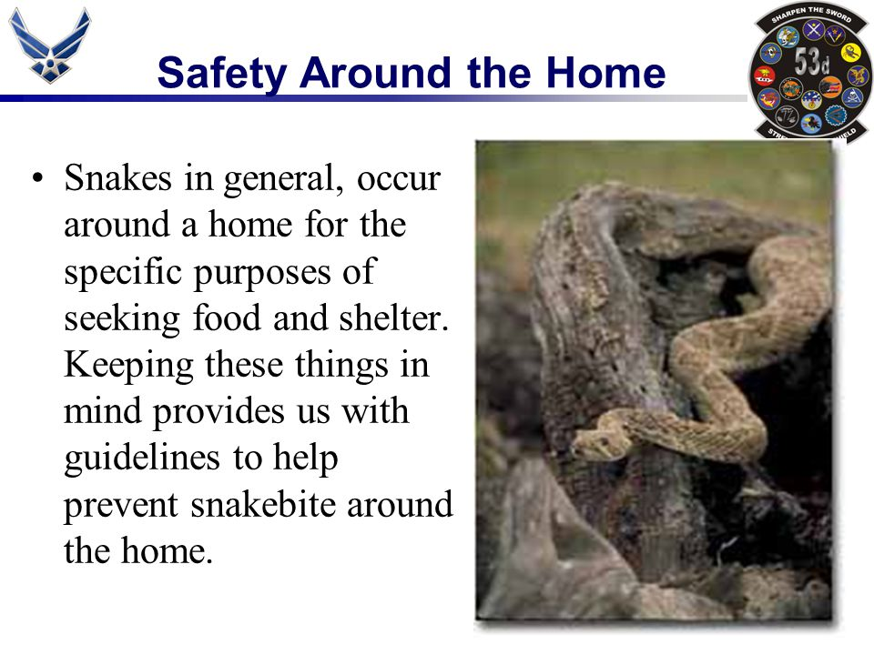 Snakes in general, occur around a home for the specific purposes of seeking food and shelter. Keeping these things in mind provides us with guidelines