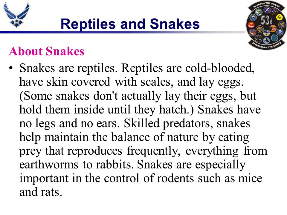 It is important to remember that not every snake is venomous, and that, while the very mention of the word often sends chills up the spine of many people, snakes do have an important role in our Texas ecosystem.