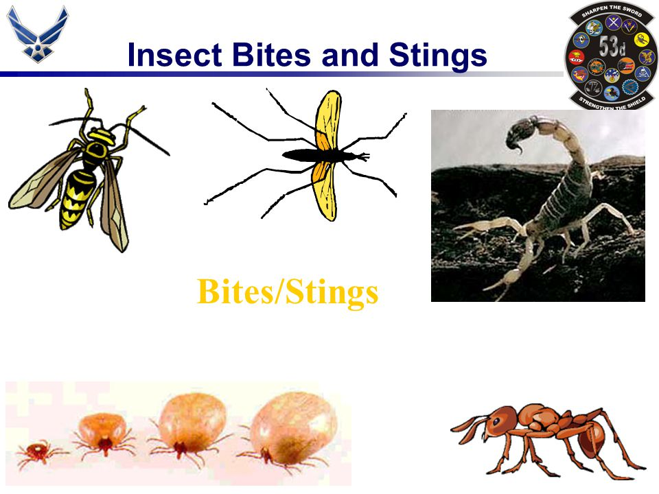 Insect Bites and Stings Bites/Stings