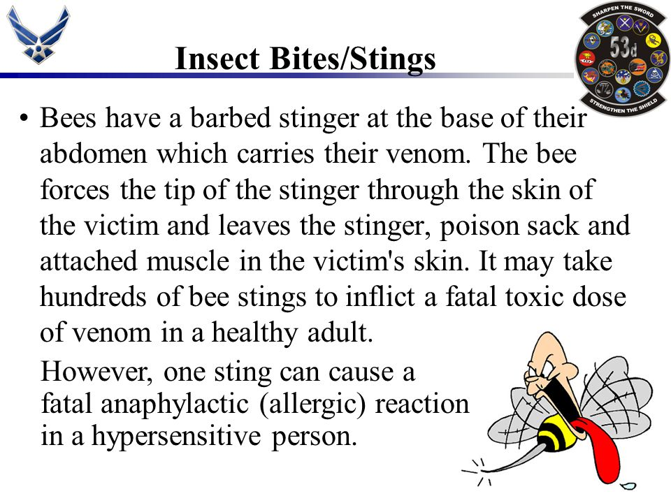 Bees have a barbed stinger at the base of their abdomen which carries their venom. The bee forces the tip of the stinger through the skin of the victi