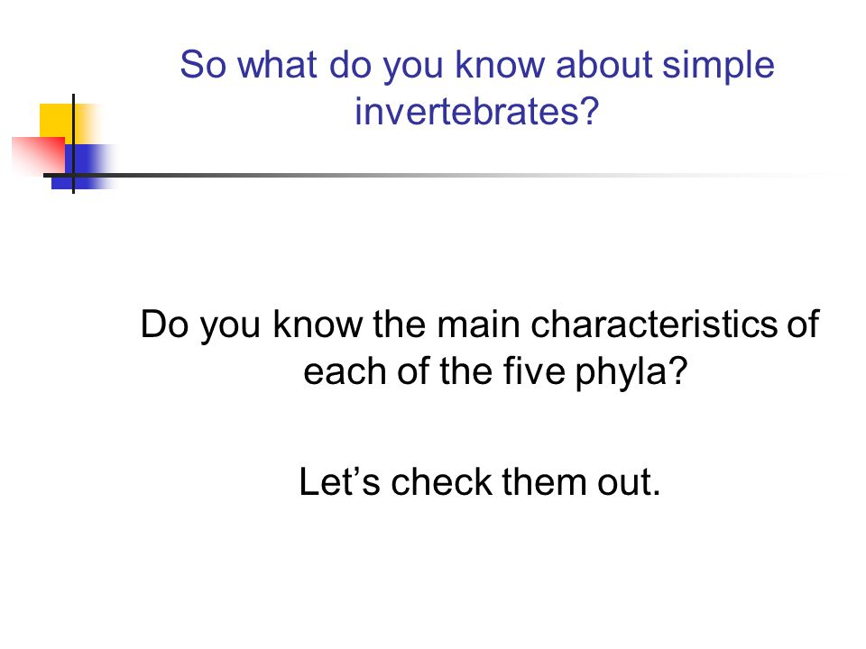 So what do you know about simple invertebrates.