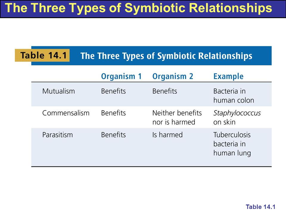 The Three Types of Symbiotic Relationships Table 14.1