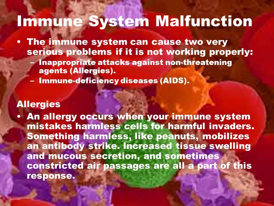 Immune System Malfunction The immune system can cause two very serious problems if it is not working properly: –Inappropriate attacks against non-thre