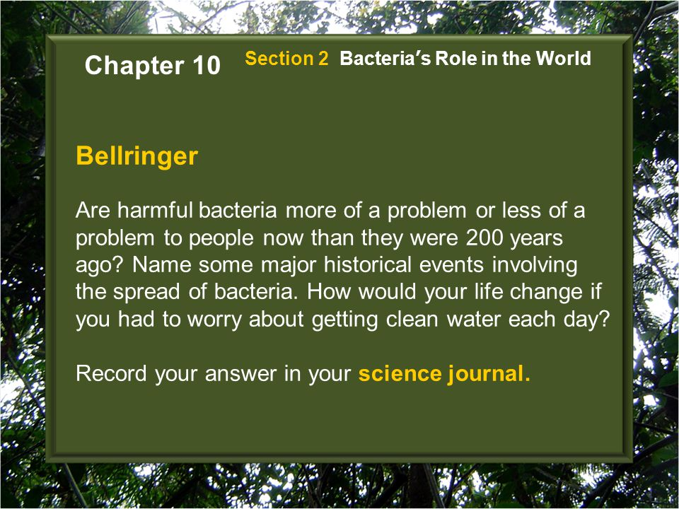 Bellringer Are harmful bacteria more of a problem or less of a problem to people now than they were 200 years ago? Name some major historical events i