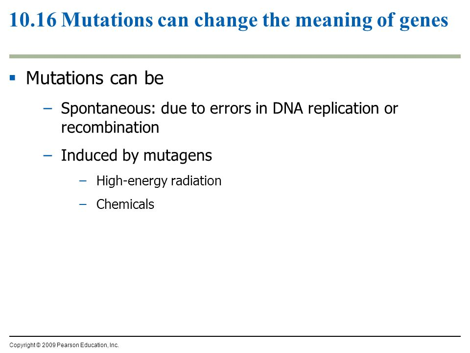 10.16 Mutations can change the meaning of genes  Mutations can be –Spontaneous: due to errors in DNA replication or recombination –Induced by mutagen
