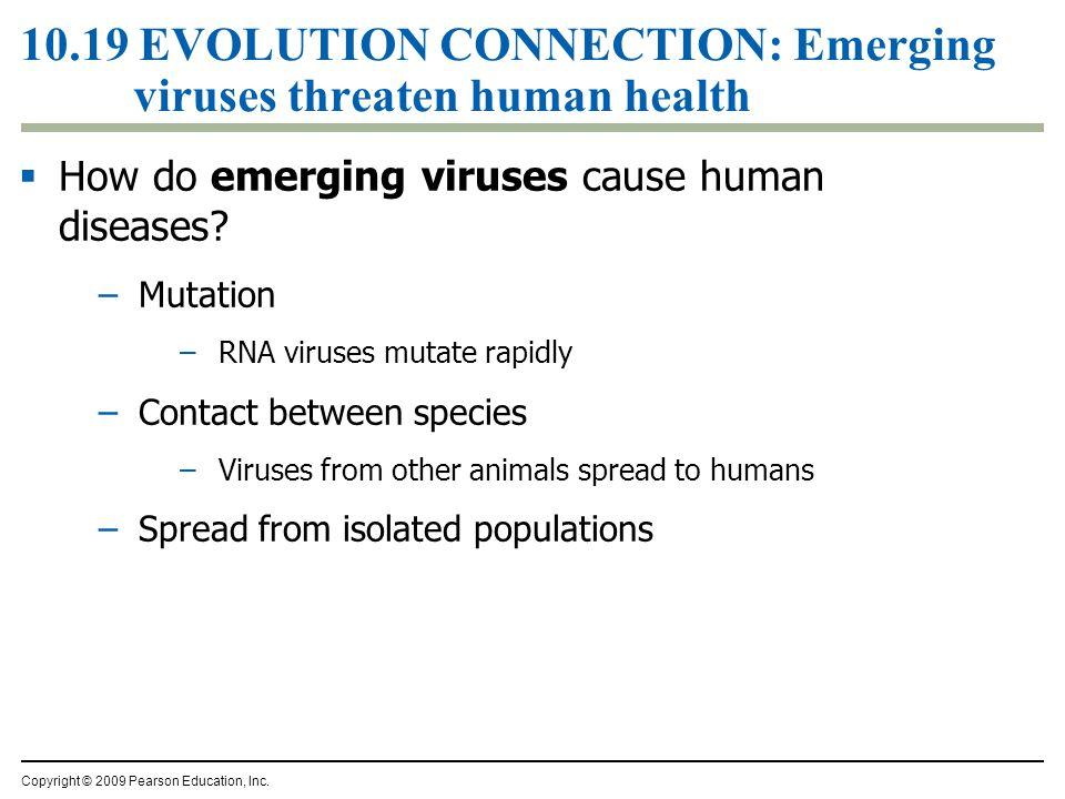 10.19 EVOLUTION CONNECTION: Emerging viruses threaten human health  How do emerging viruses cause human diseases? –Mutation –RNA viruses mutate rapid