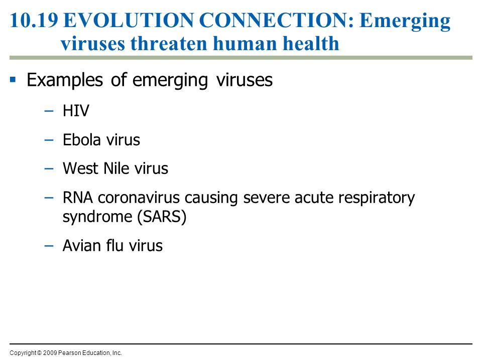 10.19 EVOLUTION CONNECTION: Emerging viruses threaten human health  Examples of emerging viruses –HIV –Ebola virus –West Nile virus –RNA coronavirus