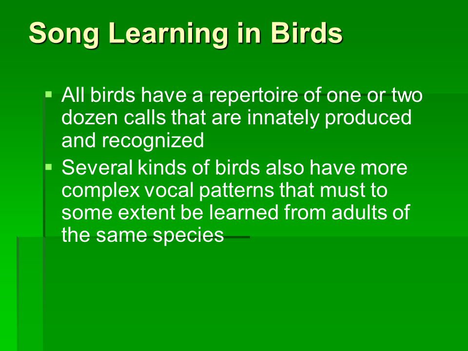 Song Learning in Birds   All birds have a repertoire of one or two dozen calls that are innately produced and recognized   Several kinds of birds also have more complex vocal patterns that must to some extent be learned from adults of the same species