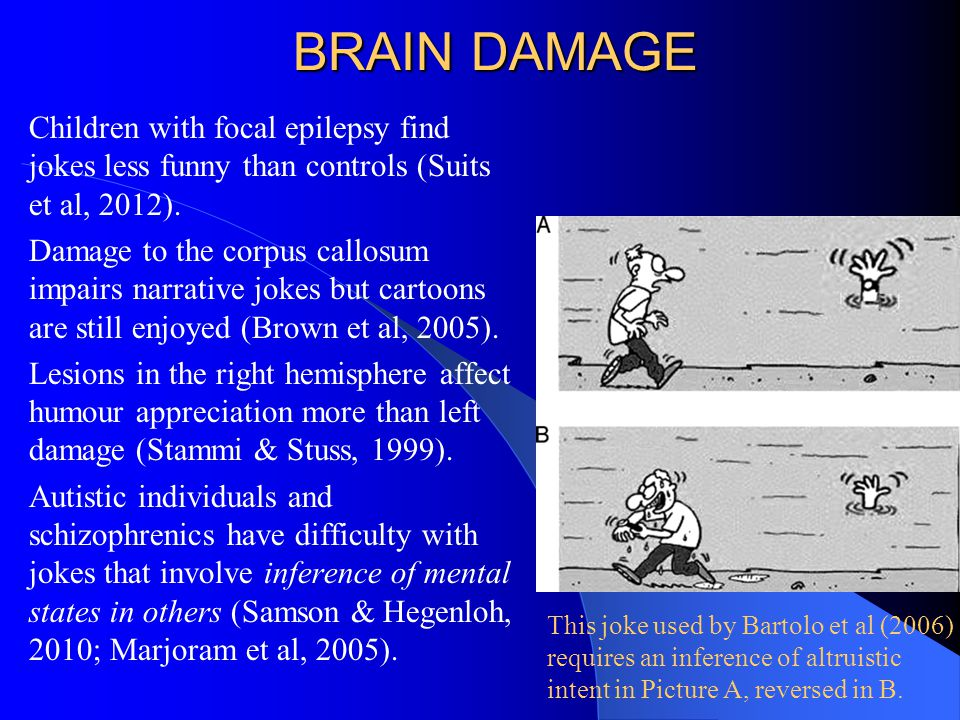 BRAIN DAMAGE Children with focal epilepsy find jokes less funny than controls (Suits et al, 2012).