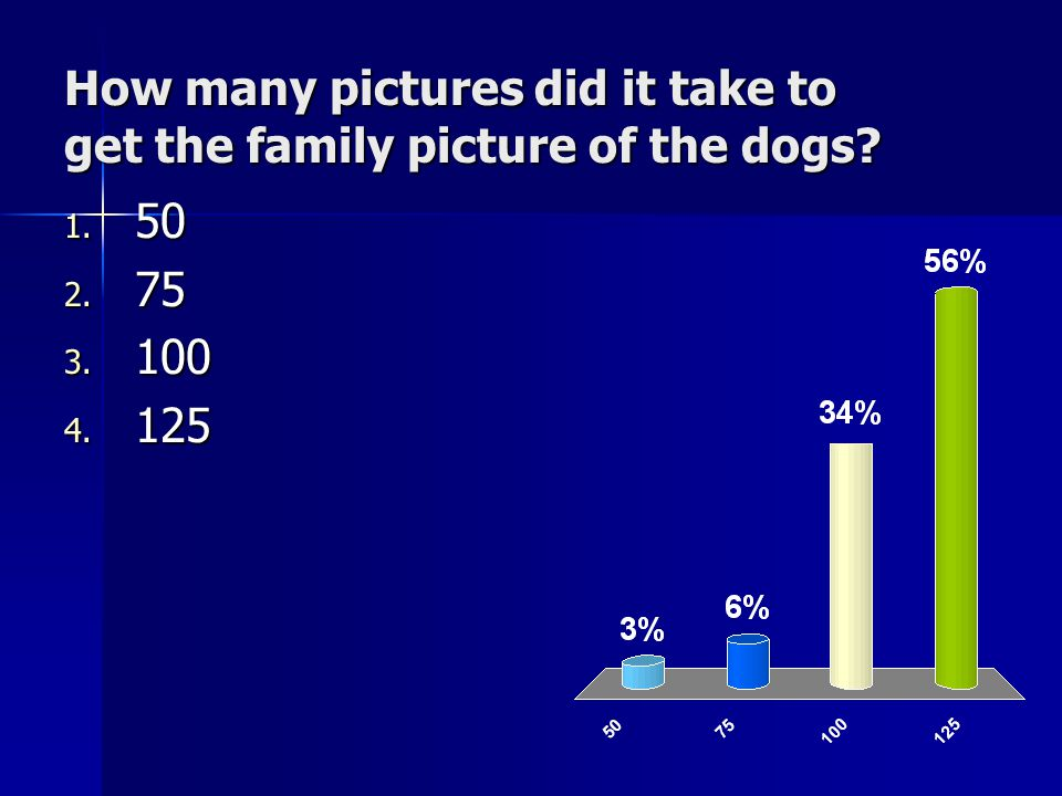 How many pictures did it take to get the family picture of the dogs 1. 50 2. 75 3. 100 4. 125