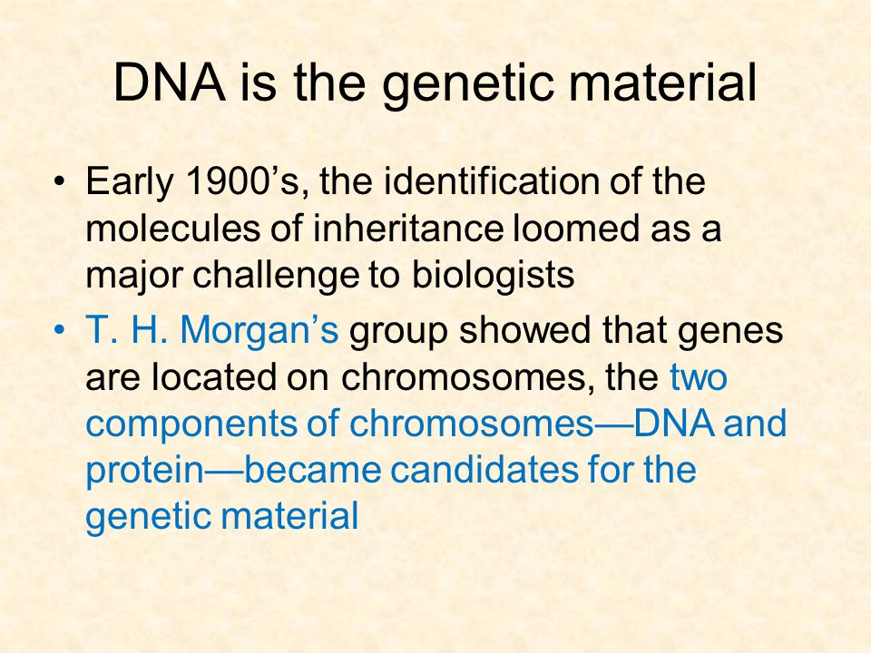 DNA is the genetic material Early 1900's, the identification of the molecules of inheritance loomed as a major challenge to biologists T. H. Morgan's