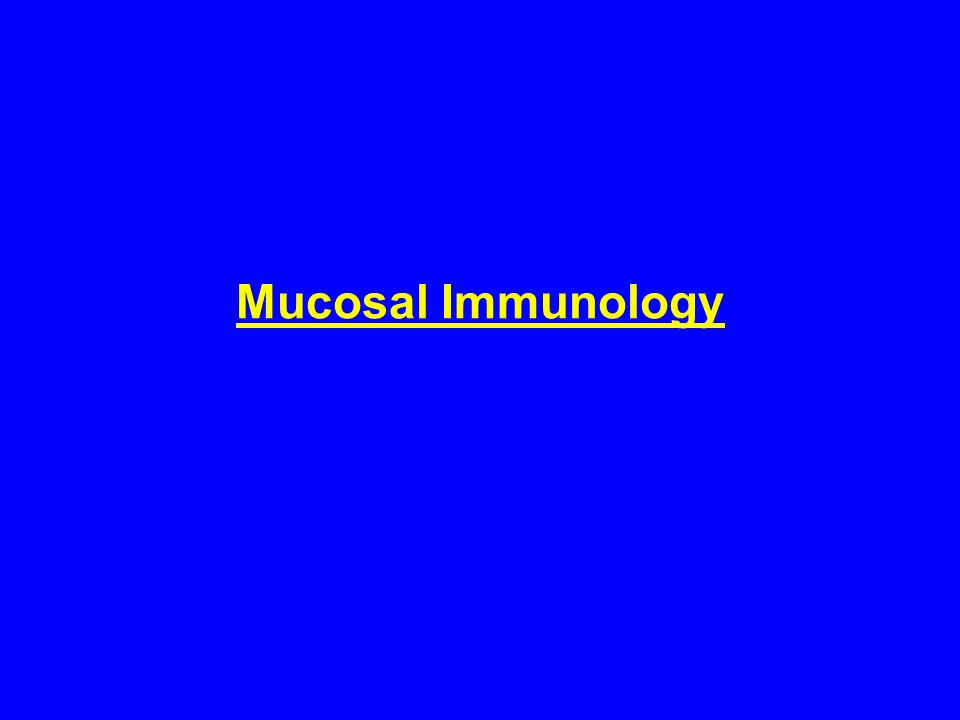 Mucosal Immunology - Lecture Objectives - To learn about: - Common mucosal immunity.