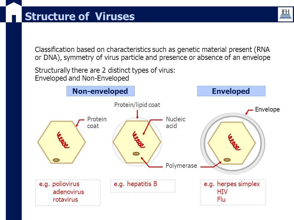 e.g. poliovirus adenovirus rotavirus Classification based on characteristics such as genetic material present (RNA or DNA), symmetry of virus particle
