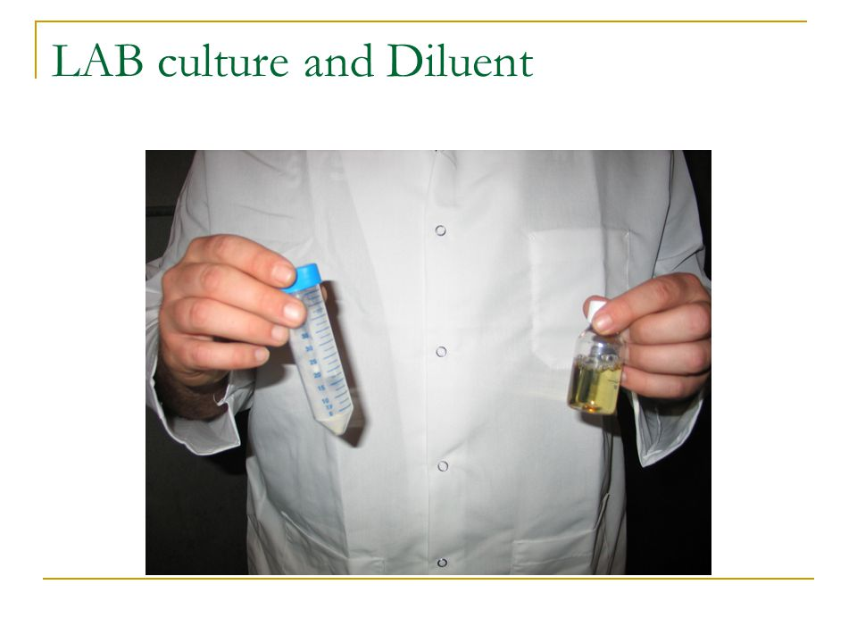 LAB culture and Diluent