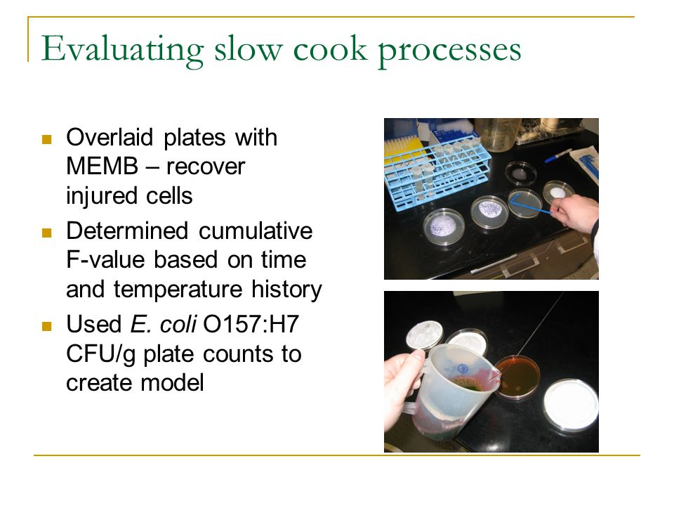 Evaluating slow cook processes Overlaid plates with MEMB – recover injured cells Determined cumulative F-value based on time and temperature history Used E.