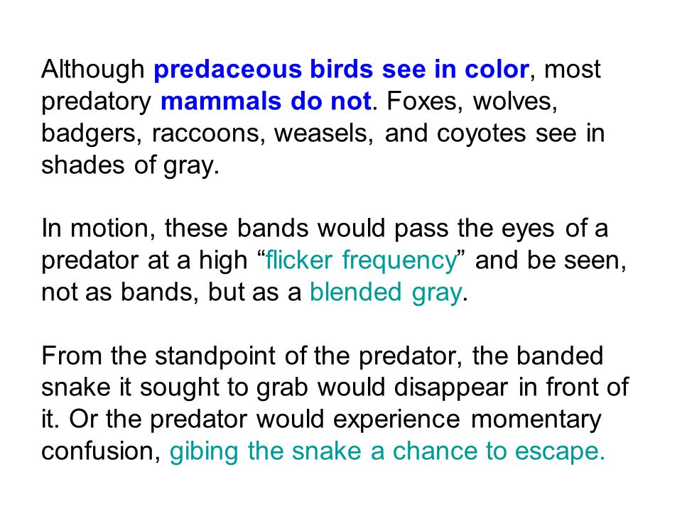 Although predaceous birds see in color, most predatory mammals do not.