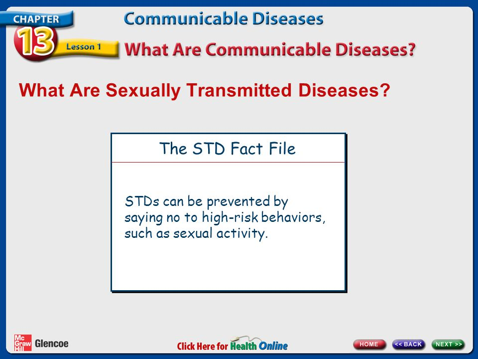 What Are Sexually Transmitted Diseases? The STD Fact File STDs can be prevented by saying no to high-risk behaviors, such as sexual activity.