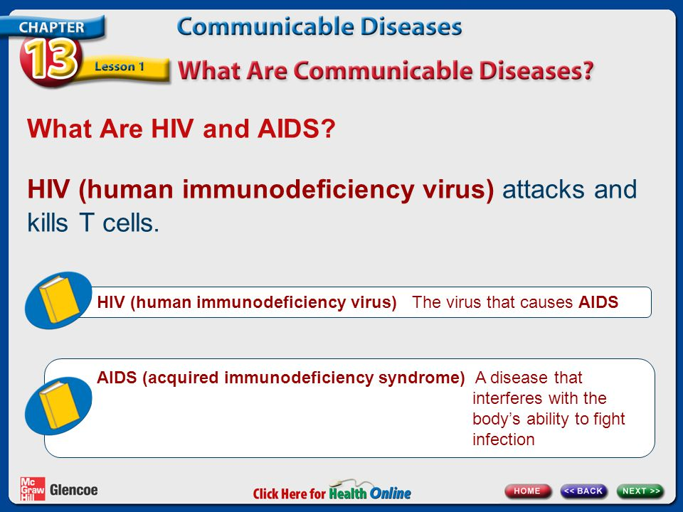 What Are HIV and AIDS? HIV (human immunodeficiency virus) attacks and kills T cells. HIV (human immunodeficiency virus) The virus that causes AIDS AID