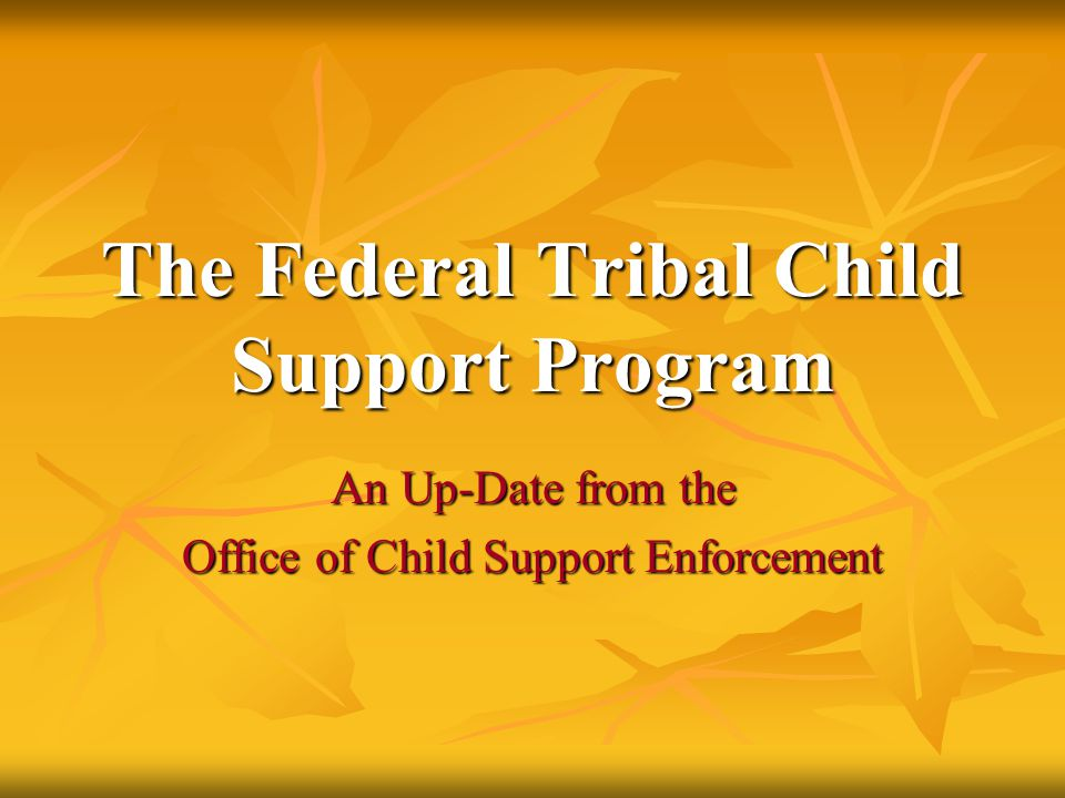The Federal Tribal Child Support Program An Up-Date from the Office of Child Support Enforcement