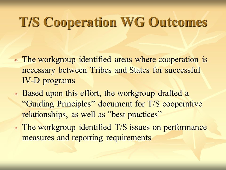 T/S Cooperation WG Outcomes  The workgroup identified areas where cooperation is necessary between Tribes and States for successful IV-D programs  Based upon this effort, the workgroup drafted a Guiding Principles document for T/S cooperative relationships, as well as best practices  The workgroup identified T/S issues on performance measures and reporting requirements