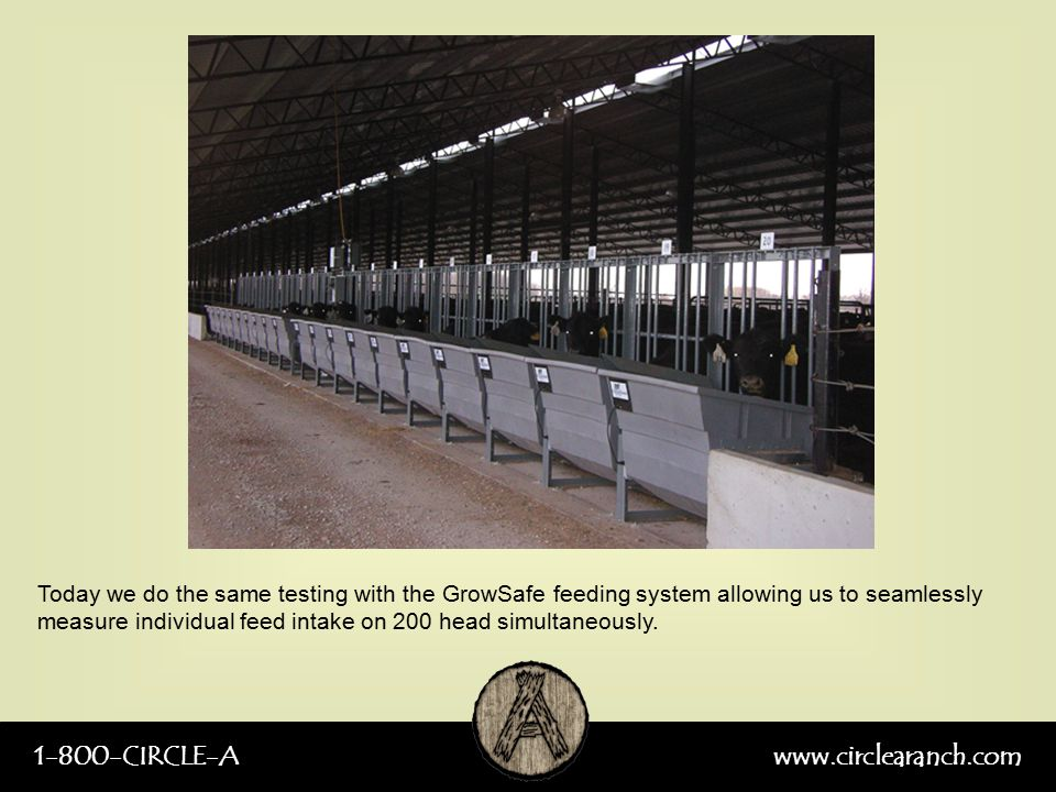 1-800-CIRCLE-Awww.circlearanch.com Today we do the same testing with the GrowSafe feeding system allowing us to seamlessly measure individual feed int