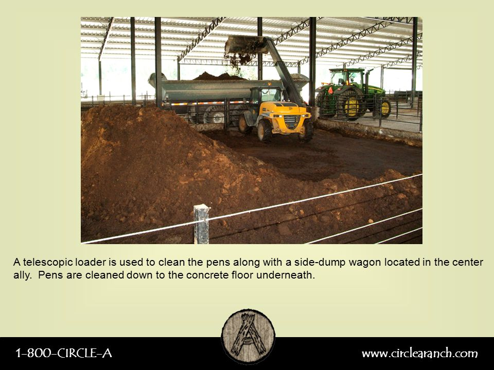 1-800-CIRCLE-Awww.circlearanch.com A telescopic loader is used to clean the pens along with a side-dump wagon located in the center ally. Pens are cle
