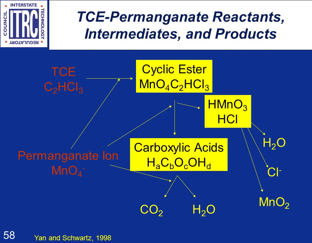 58 TCE-Permanganate Reactants, Intermediates, and Products TCE C 2 HCl 3 Cyclic Ester MnO 4 C 2 HCl 3 Permanganate Ion MnO 4 - Carboxylic Acids H a C b O c OH d HMnO 3 HCl CO 2 H2OH2O H 2 O Cl - MnO 2 Yan and Schwartz, 1998