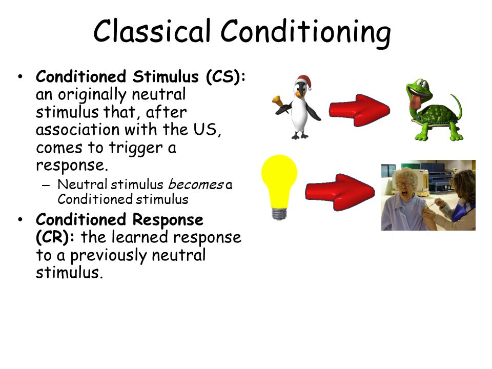 Classical Conditioning Conditioned Stimulus (CS): an originally neutral stimulus that, after association with the US, comes to trigger a response.