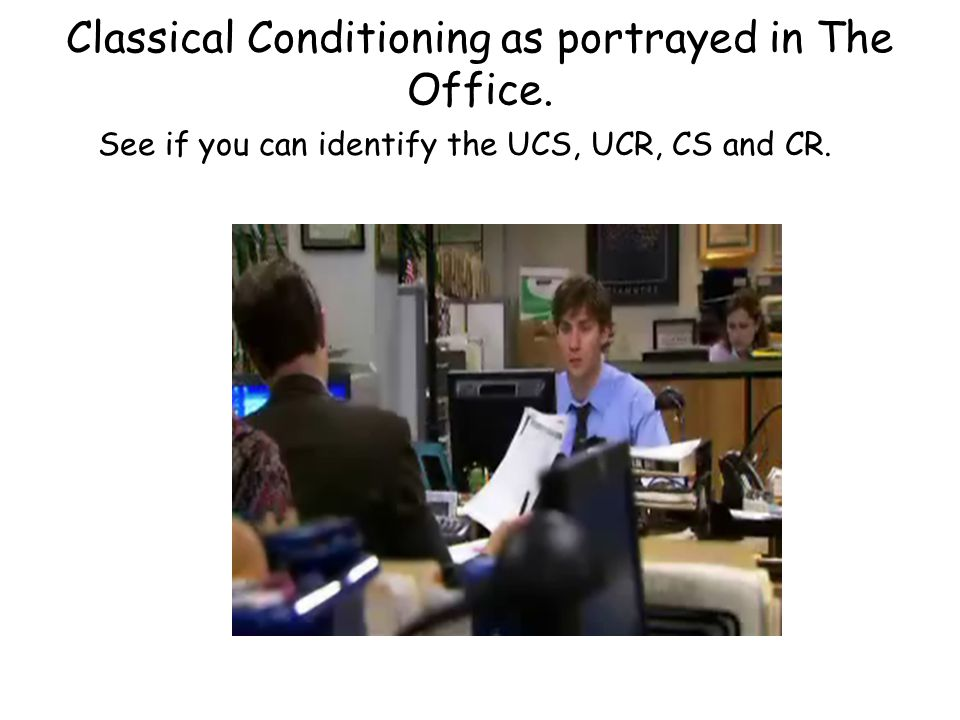Classical Conditioning as portrayed in The Office. See if you can identify the UCS, UCR, CS and CR.