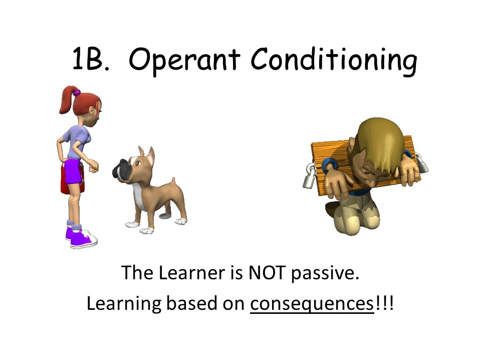 1B. Operant Conditioning The Learner is NOT passive. Learning based on consequences!!!