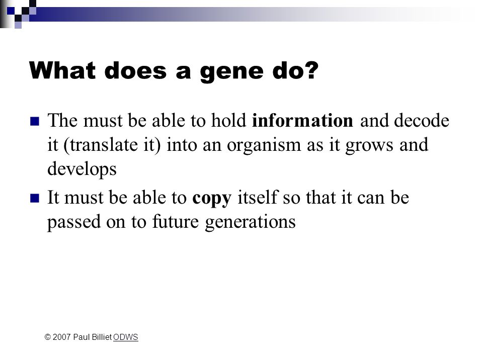 MOLECULAR GENETICS THE CHEMICAL NATURE OF THE GENE © 2007 Paul Billiet ODWSODWS