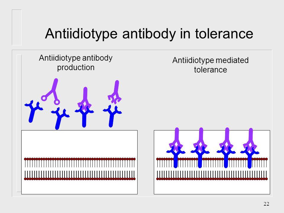 21 anti-Idiotype Vaccine