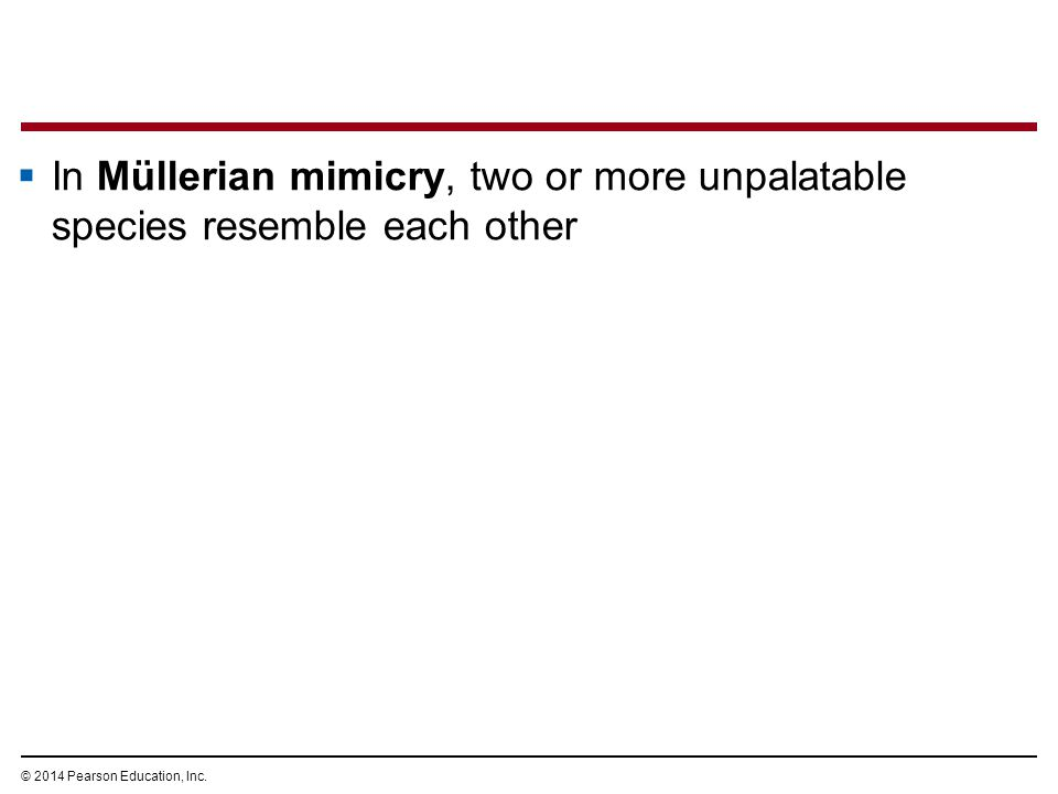 © 2014 Pearson Education, Inc.  In Müllerian mimicry, two or more unpalatable species resemble each other