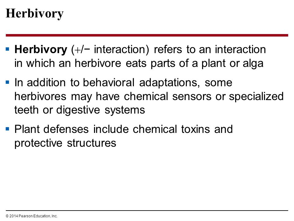 © 2014 Pearson Education, Inc. Herbivory  Herbivory (  /− interaction) refers to an interaction in which an herbivore eats parts of a plant or alga