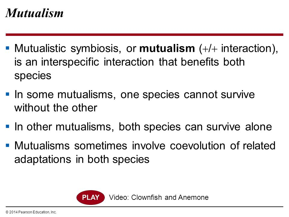 © 2014 Pearson Education, Inc. Mutualism  Mutualistic symbiosis, or mutualism (  /  interaction), is an interspecific interaction that benefits bot