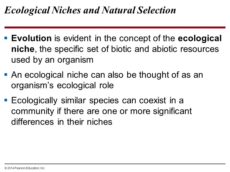 © 2014 Pearson Education, Inc. Ecological Niches and Natural Selection  Evolution is evident in the concept of the ecological niche, the specific set