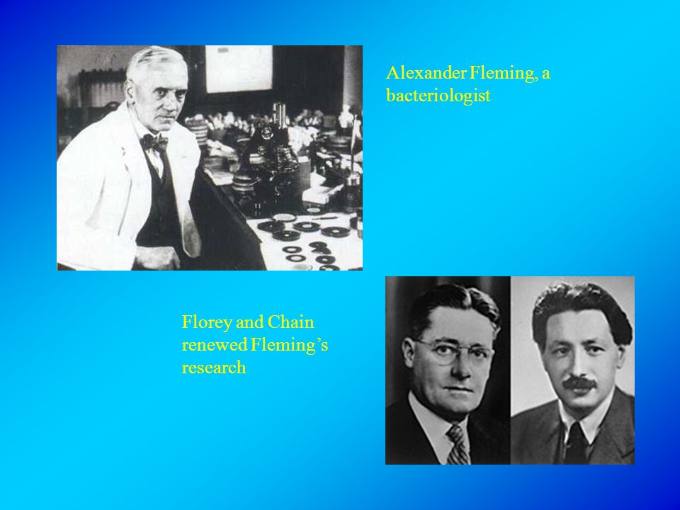 Alexander Fleming, a bacteriologist Florey and Chain renewed Fleming's research