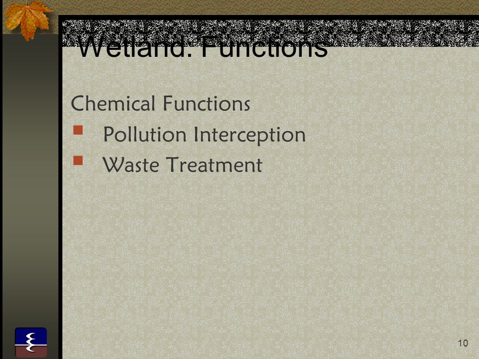 10 Wetland: Functions Chemical Functions  Pollution Interception  Waste Treatment