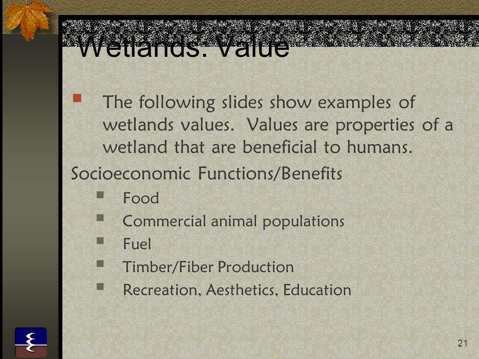 21 Wetlands: Value  The following slides show examples of wetlands values. Values are properties of a wetland that are beneficial to humans. Socioeco