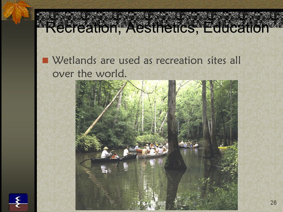 26 Recreation, Aesthetics, Education Wetlands are used as recreation sites all over the world.