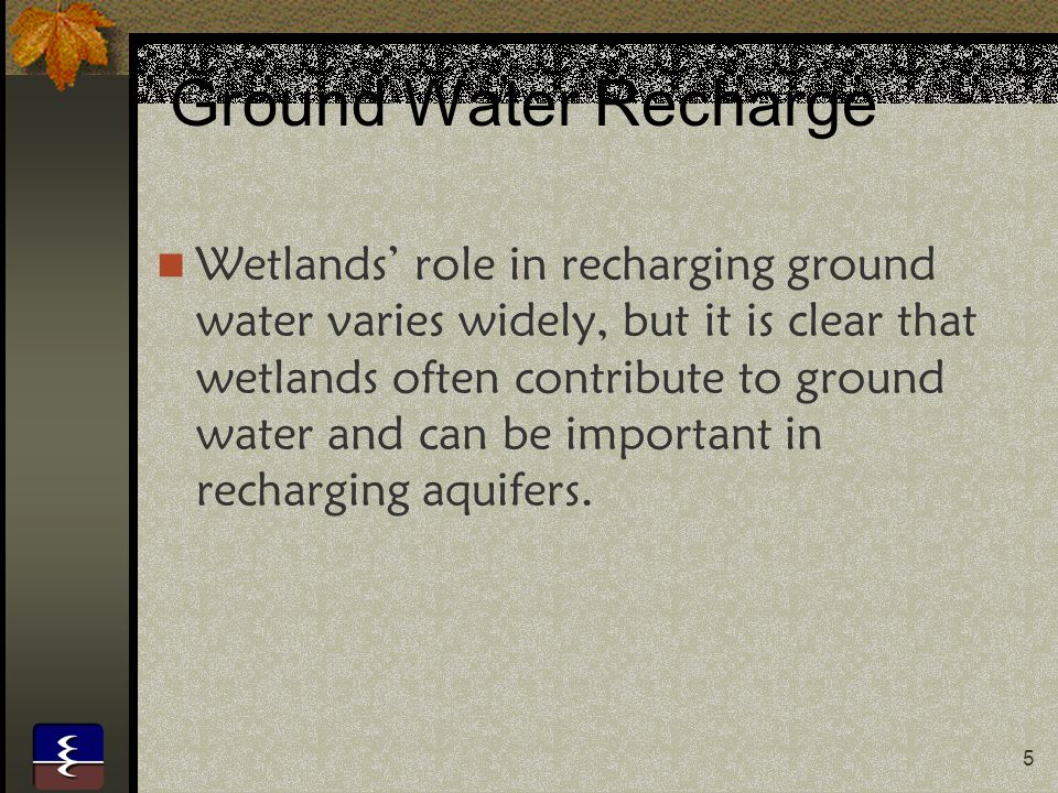 6 Sediment Traps Wetlands improve water quality by acting as sediment sinks or basins.