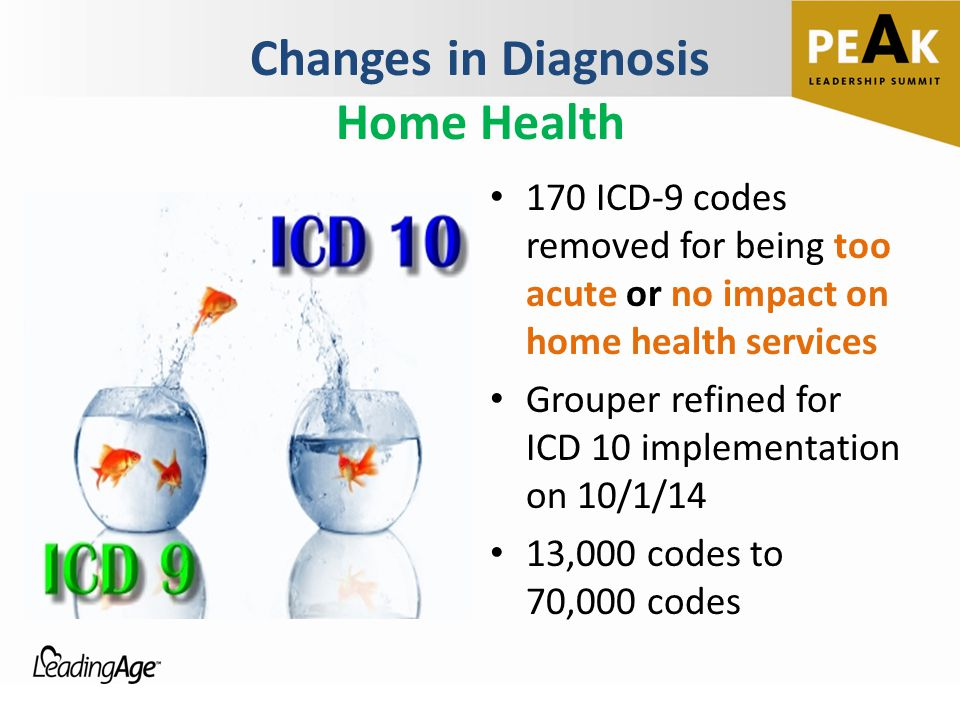 Changes in Diagnosis Home Health 170 ICD-9 codes removed for being too acute or no impact on home health services Grouper refined for ICD 10 implement